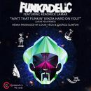 Ain't That Funkin' Kinda Hard On You? (Remixes) thumbnail