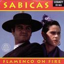 Flamenco On Fire thumbnail