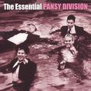 The Essential Pansy Division thumbnail