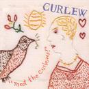 """Meet The Curlews!"" thumbnail"